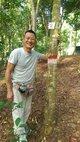 在亚洲种植园资本公司位于马来西亚的种植园,陈观荣先生与一棵土沉香树合影。