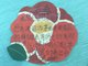 The children expressed their gratitude to Kweichow Moutai on the flower